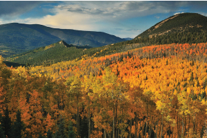 8 Great Fall Photo Spots