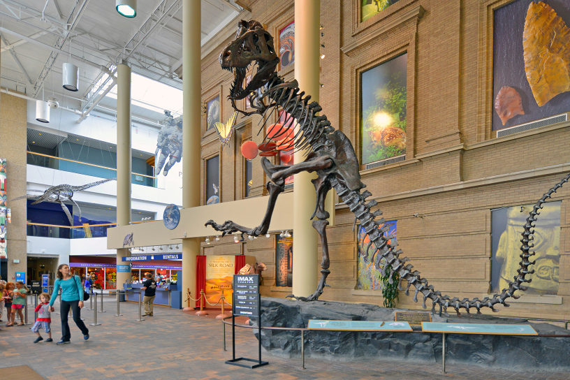 Tons of Intriguing Museums to Visit